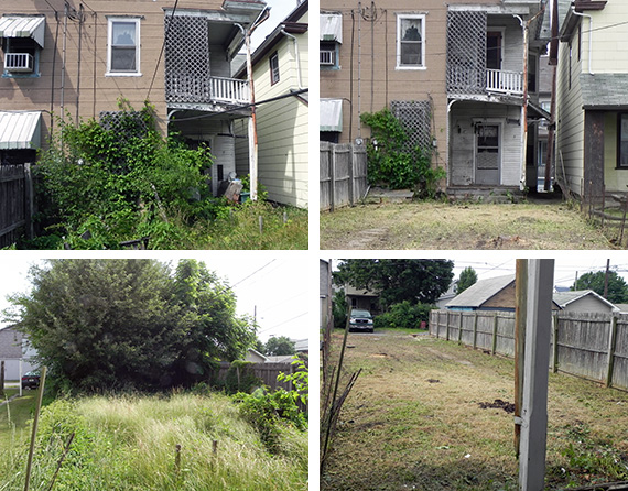 #239 Spruce Street - Before and After