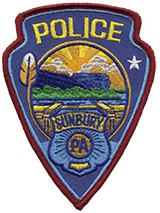 Badge of Sunbury PD